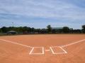 Baseball Field 3 (4)